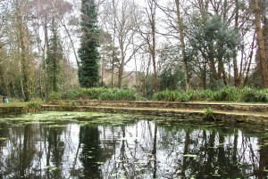 Bmth pond