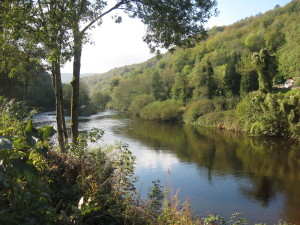 Symonds Yat Oct 11